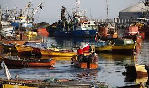 Photo of Cerrarán pesquera Camanchaca en Iquique
