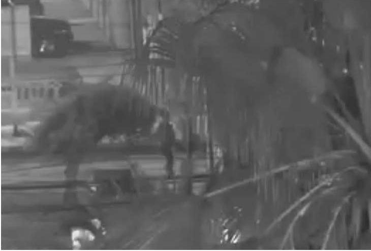 Photo of Tres veces en una semana detienen a menor robando a vehículos en Iquique y Alto Hospicio